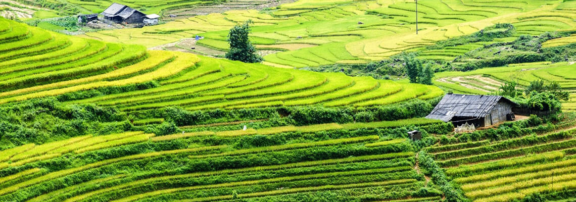 Extrême Nord du Vietnam 14 jours sapa