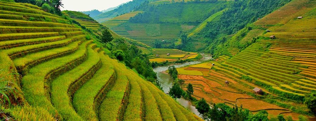 Découverte de la beauté cachée du Vietnam et Cambodge sapa