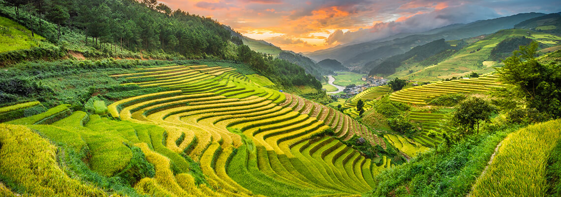 Vents sauvages du Tonkin 14 jours mu cang chai