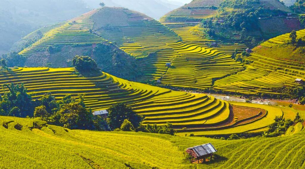 circuit vietnam authentique mu cang chai