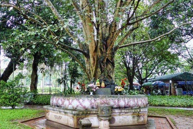 Conseils pour visiter la pagode au pilier unique