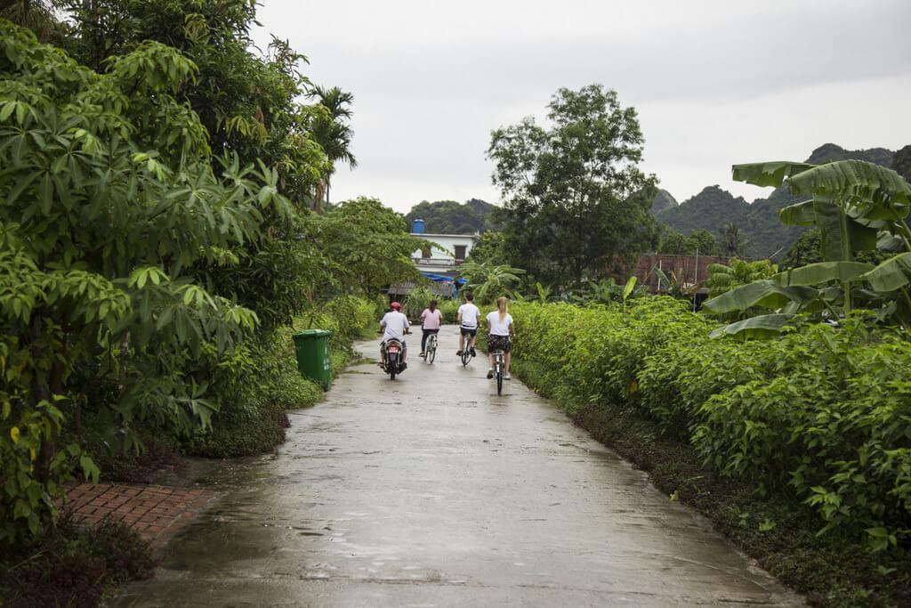 Faire du vélo dans le village de Viet Hai
