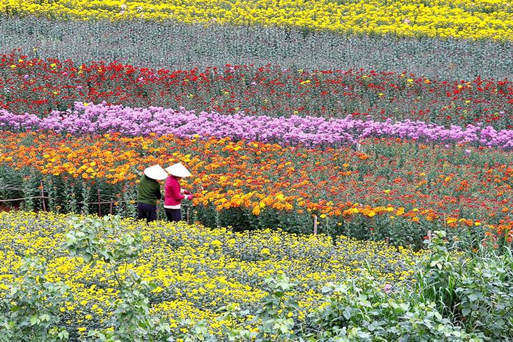 Hanoi au printemps (février – avril)