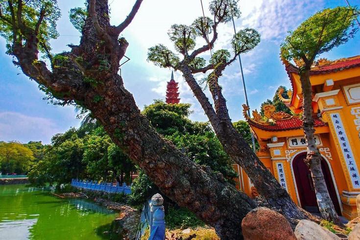 Les points forts de la pagode Tran Quoc