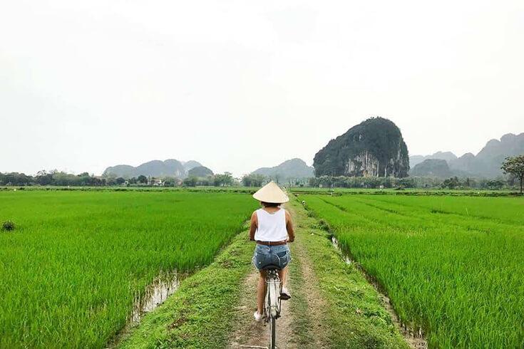 Faire du vélo dans les rizières