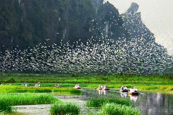 Parc ornithologique d'écotourisme de Thung Nham