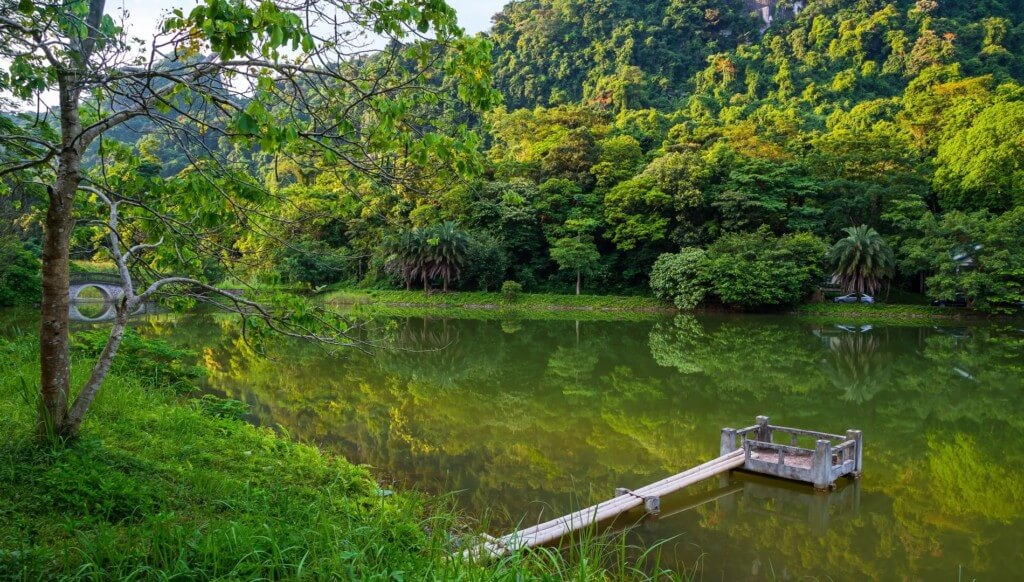 Un aperçu du parc national de Cuc Phuong Ninh Binh