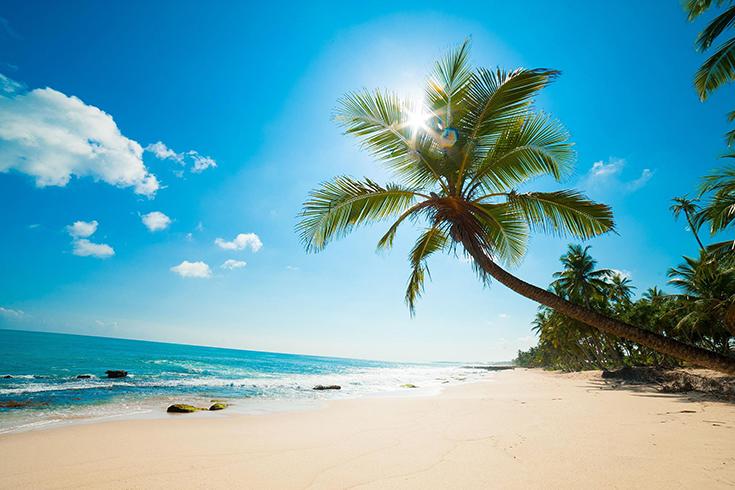 Le meilleur moment pour visiter l'île de Phu Quoc