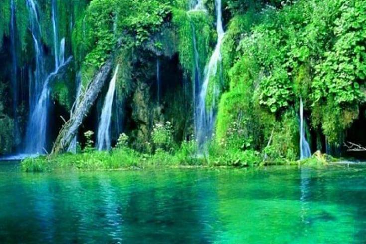 Valeurs de la biodiversité du parc national de Phu Quoc