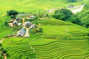 Beauté de la vallée de Muong Hoa