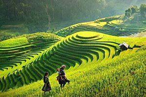 Découverte de la beauté cachée du Vietnam et Cambodge