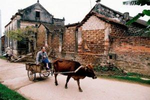 hanoi guide duong lam
